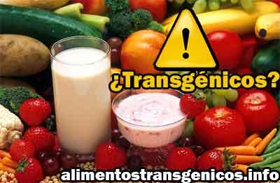 organismos transgenicos microorganismos