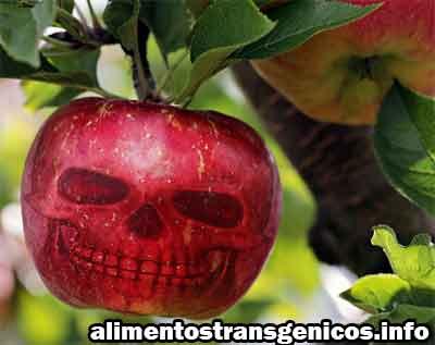 beneficios de las plantas transgénicas