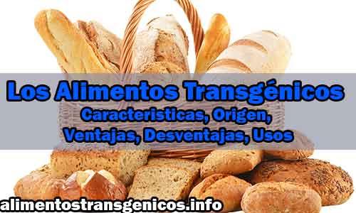 Los Alimentos Transgénicos Caracteristicas, Origen, Ventajas, Desventajas, Usos