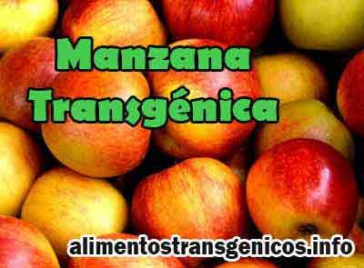 manzanas transgenicas inoxidables