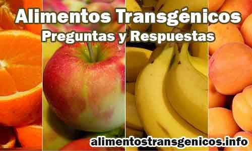 Preguntas y respuestas sobre los alimentos transgénicos