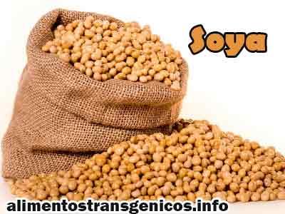 principales cultivos transgenicos ventajas y desventajas
