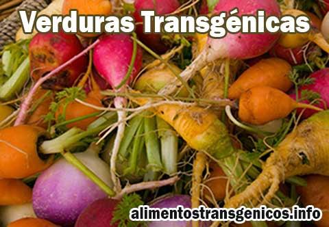 Las Verduras Transgénicas Ventajas y Desventajas Beneficios y Riegos para la Salud